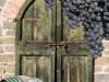 shutterstock_72579400